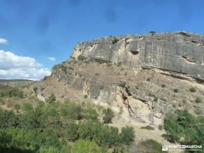 Atazar-Meandros Río Lozoya-Pontón de la Oliva-Senda Genaro GR300;partes del arbol cascada de san m